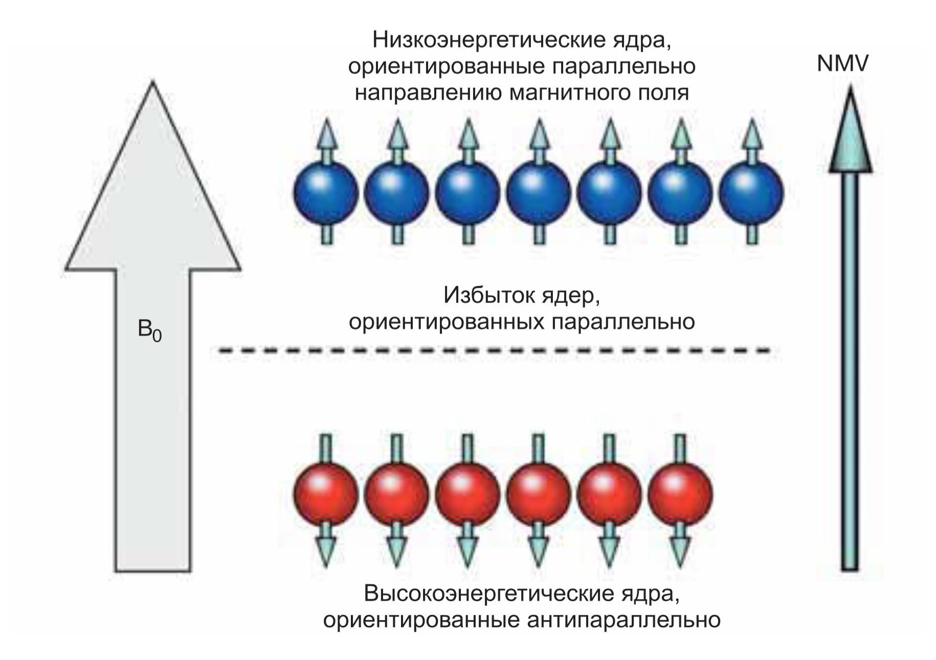 Суммарный вектор намагниченности