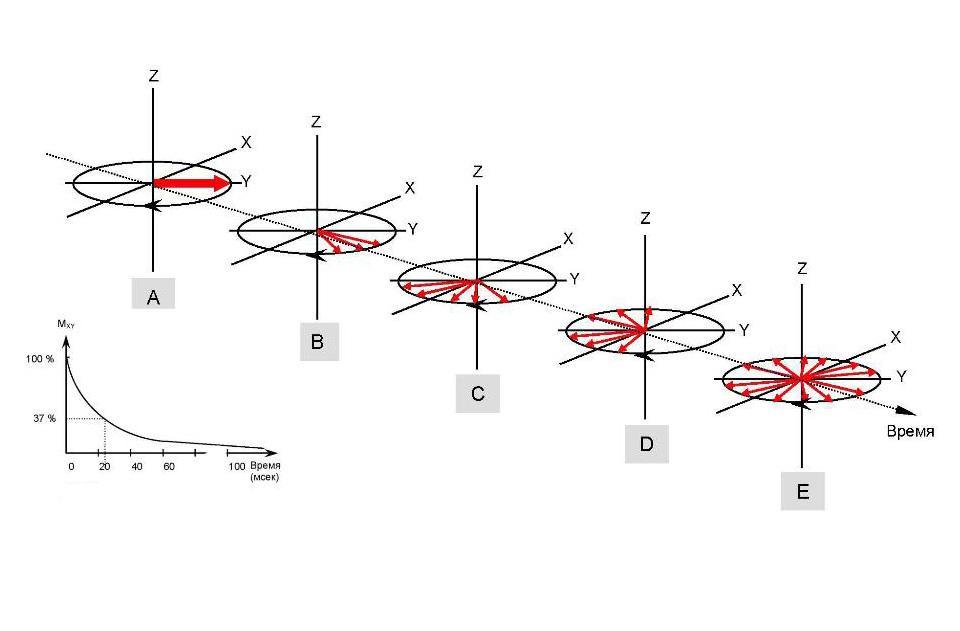 Кривые релаксации